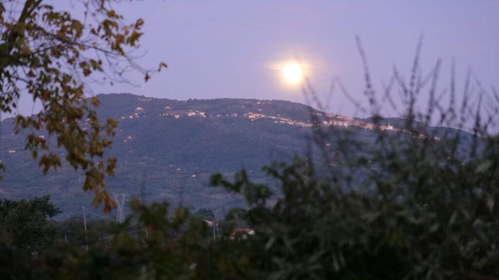 Una foto panoramica scattata con Lumix S1